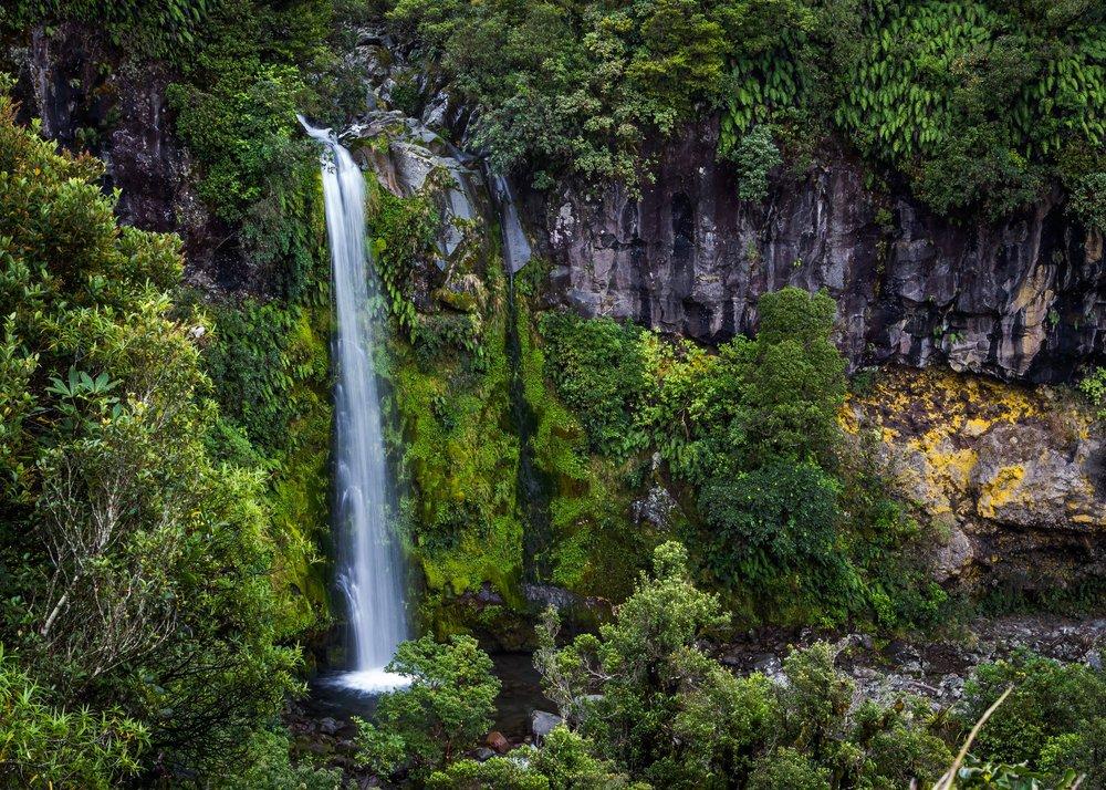 dawson-falls-mt-taranaki