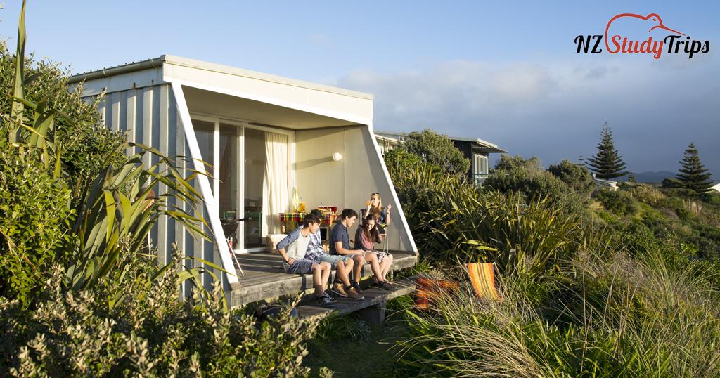 Поиск жилья в Новой Зеландии