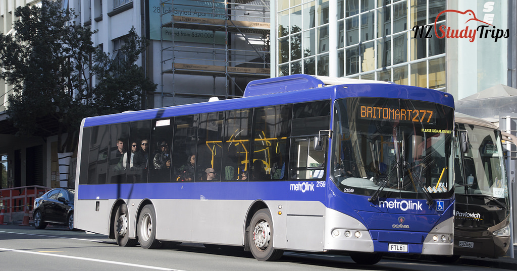 public-transport-in-auckland-new-zealand-nzstudytrips