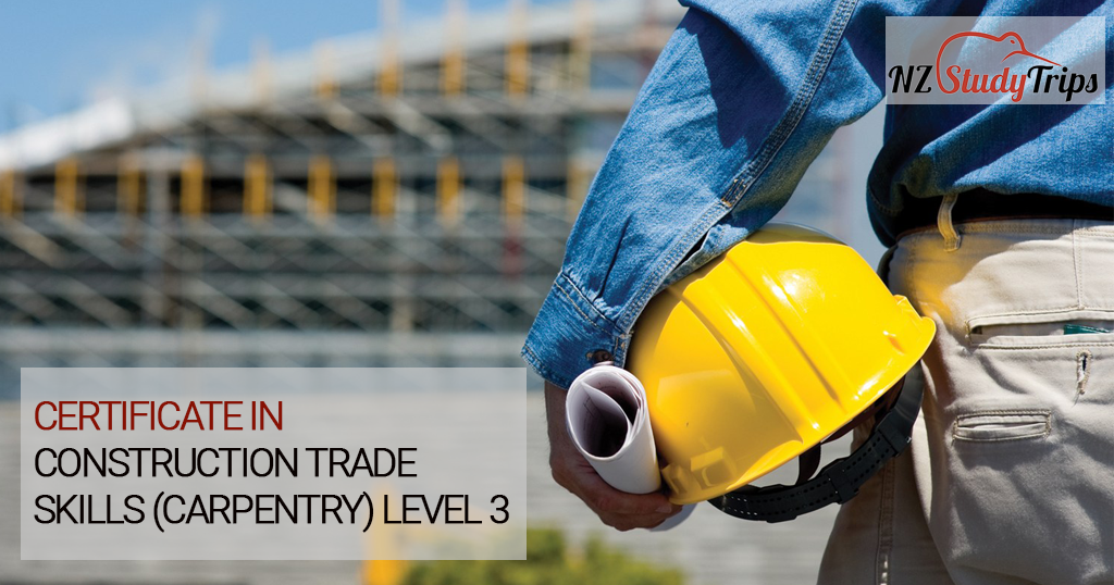 nz-certificate-in-construction-trade-skills-nzstudytrips