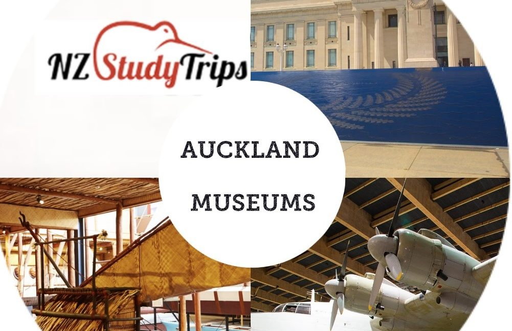 Крупные музеи Окленда - NZ Study Trips