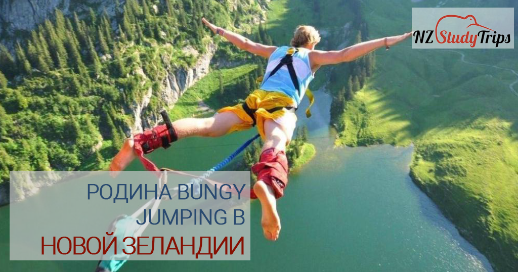bungy-jumping-nz