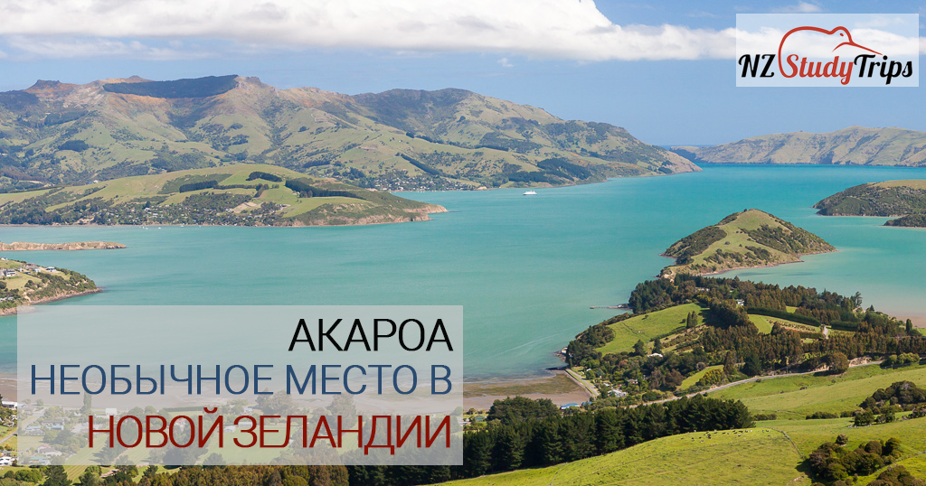 akaroa new zealand nzstudytrips