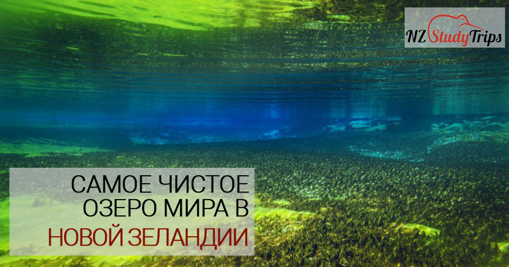 blue lake - samoe chistoe ozero mira nz