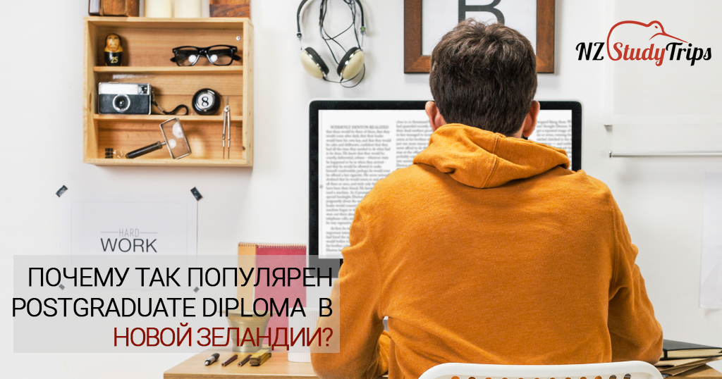 Postgraduate Diploma: что это такое и почему так популярно